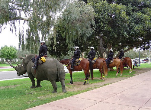 Running out of police officers and soldiers, as a last resort London Zoo jumps in to help secure the 2012 Olympics.