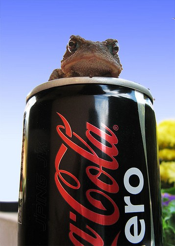 Despite hard evidence, Kermit denied all allegations that he was on Coke.