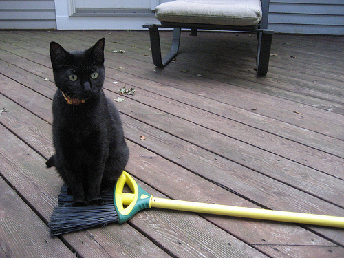 A broom with a mew.