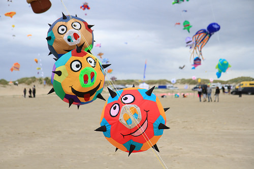 Frankly, the other kites all looked a bit pointless.