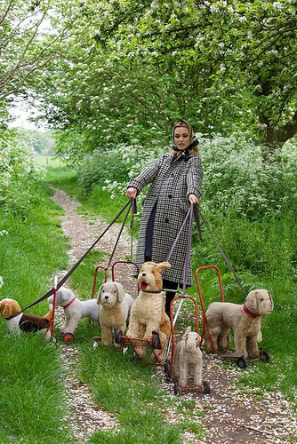 Jane is a breeder of toy dogs