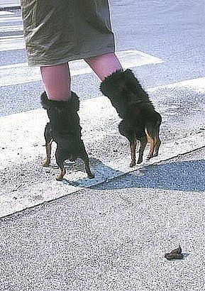 ♫♫ These boots were made for walkies....... ♫♫