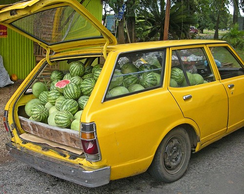 """Right! No more kids!"", shouted Mr Melon. ""Theres no room in the car when we go on holiday!"""